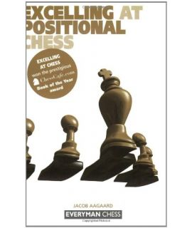 Excelling at Positional Chess by Aagaard, Jacob