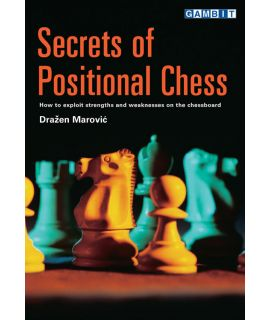 Secrets of Positional Chess - Marović