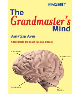 The Grandmaster's Mind - Avni