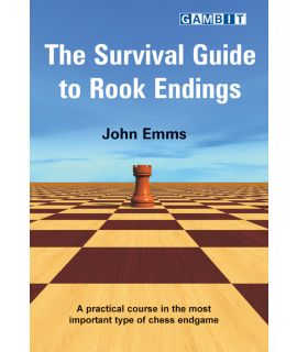 The Survival Guide to Rook Endings - Emms
