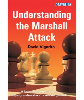 Understanding the Marshall Attack - Vigorito